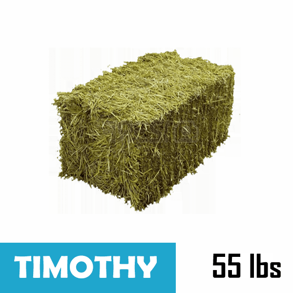 Small-Square Bale of Timothy