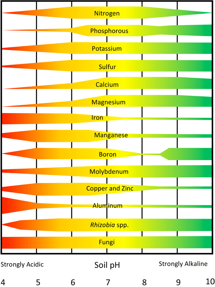 Relationship between soil pH and nutrient availability.